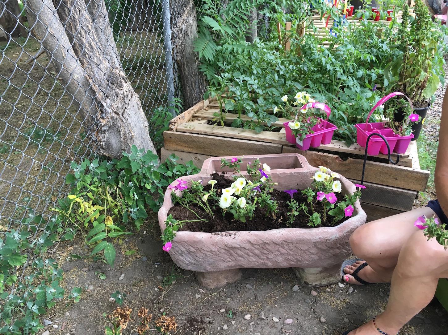 backyard activities u0026 music jam pueblo house