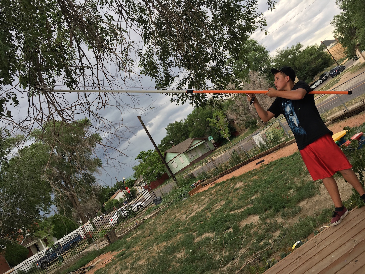 backyard activities music jam pueblo house cage trying out the new branch trimmer